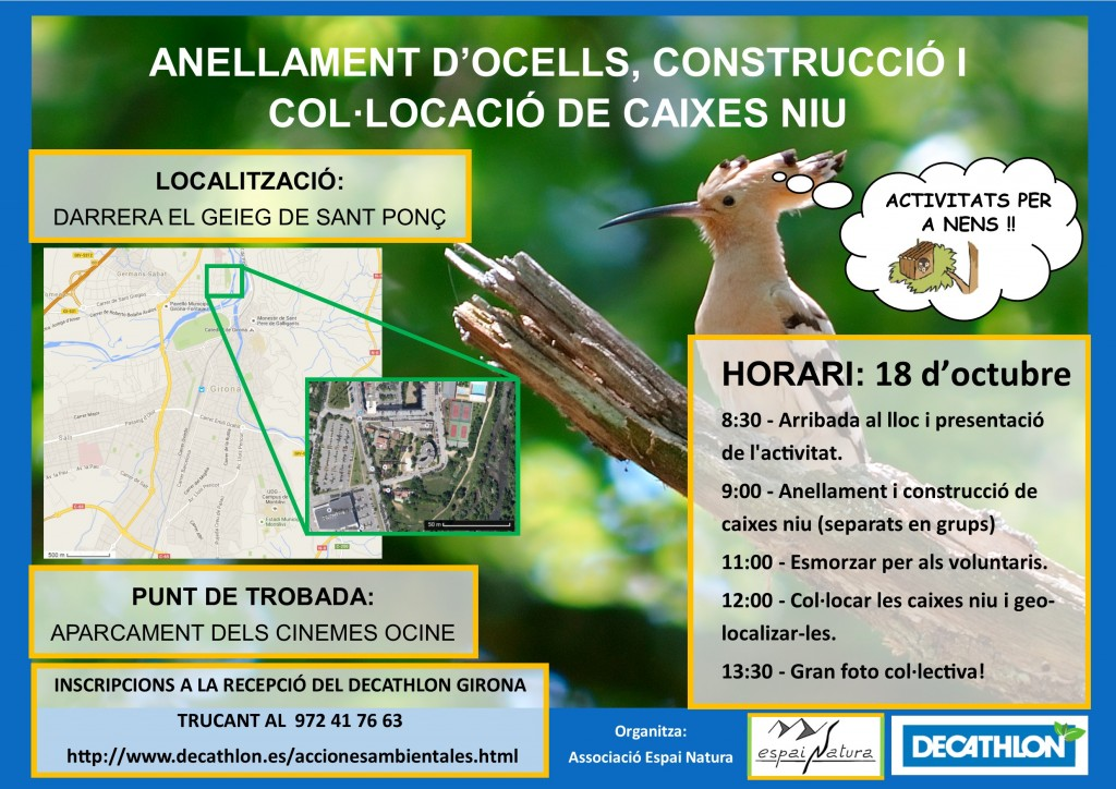 cartell accions